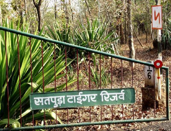 Satpura Tiger Reserve Entry Gate