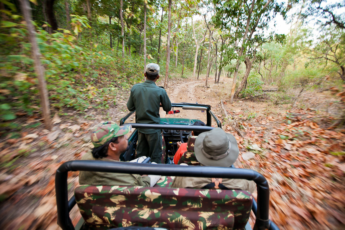 Jeep Safari in Satpura National Park