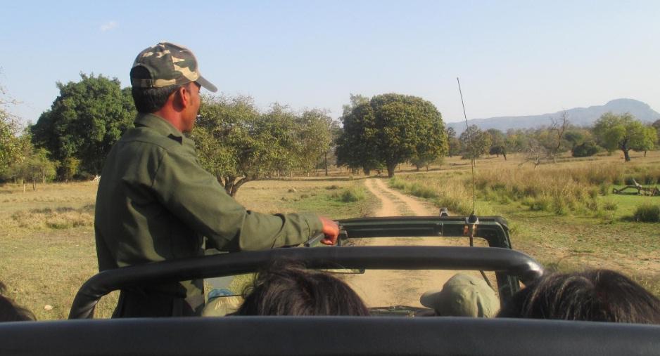 satpura jeep safari
